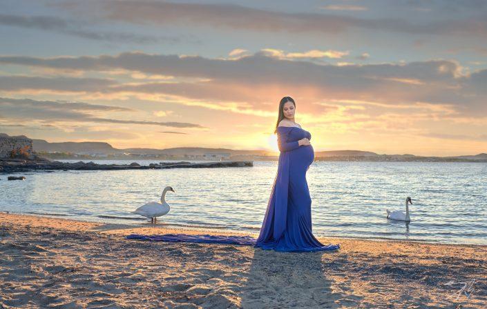 gravid-kvinde-strand-vannkant-svaner-står-omkring-solnedgang-fotografering-vakkert